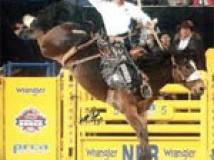 Your Bucket List: National Finals Rodeo