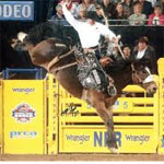 Your Bucket List: National Finals Rodeo