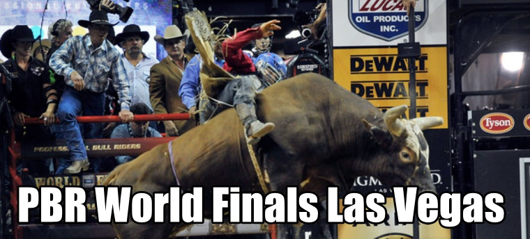 PBR World Finals Seating Guide | eSeats com